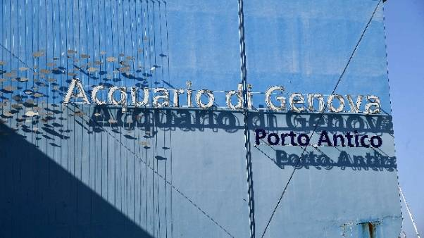 Coronavirus: riapre l'Acquario a Genova