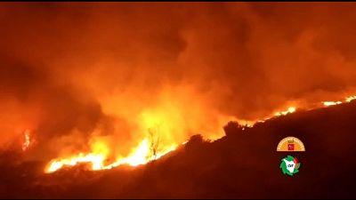 Incendio boschivo in Versilia