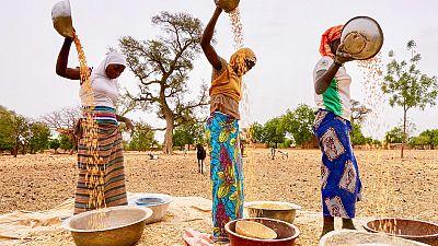 Coronavirus - Burkina Faso crisis and COVID-19 concerns highlight pressure on Sahel food security