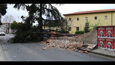 Firenze, codice giallo vento di Grecale