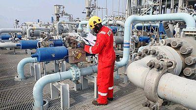 Les interdictions européennes de voyage sont contre-productives et nuisent à la capacité du secteur des hydrocarbures à soutenir la reprise économique de l'Afrique