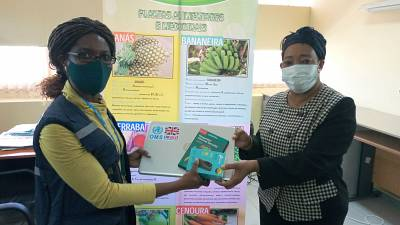 Coronavirus - Mozambique: Ministry of Health, Mozambique recieves donation from British High Commission in Maputo and WHO