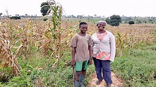 A Ghanaian maize farmer thrives on the ashes of destroyed forest