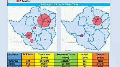 Coronavirus - Zimbabwe: COVID-19 Update (13th December 2020)