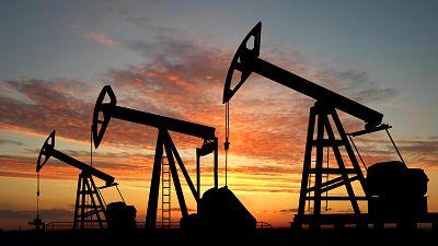 Angola's ANPG Clarifies Environmental Impact of Upcoming Onshore Licensing Round