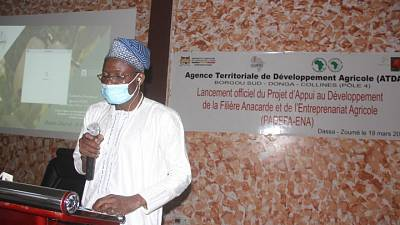 Bénin : démarrage du projet d'appui au développement de la filière anacarde et de l'entreprenariat agricole financé par la Banque africaine de développement