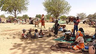 West Darfur clashes force nearly 2,000 refugees into Chad