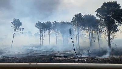 Ieri rogo ha distrutto cento ettari di bosco nell'agrigentino