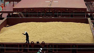 Anec reduce proyección de exportaciones soja de Brasil en abril a 15,78 millones toneladas