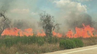 Vento ostacola pompieri.Fiamme lambiscono strada Lecce-Gallipoli
