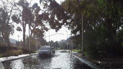 Bomba d'acqua e forte vento, Comune chiude parchi cittadini