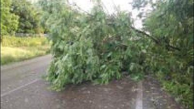 Per temporali, vento e mareggiate