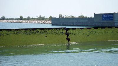 Laguna Venezia chiusa navigazione da Ordinanza Capitaneria Porto