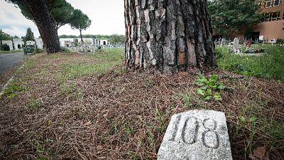 Sulle sepolture solo un numero collegato al registro cimiteriale