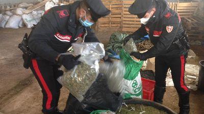 Blitz carabinieri, arrestato un 39enne del Nuorese
