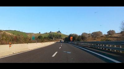 Stavano portando cani e gatti per adozione nel nord Italia