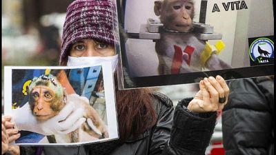 In piazza Duomo, contro la vivisezione