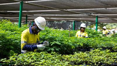 Strong Sustainability Performance sees Perseus Mining deliver US$385 million to Ivorian and Ghanaian Economies in 2020
