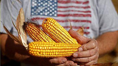 GRANOS-Maíz en EEUU supera un máximo de ocho años debido a la preocupación por la oferta mundial