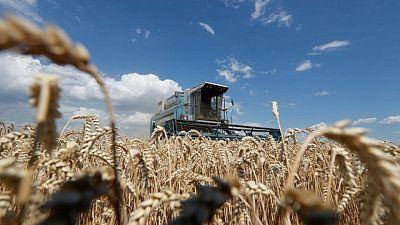 صادرات أوكرانيا من الحبوب تهبط 24% حتى الآن في موسم 2020-2021