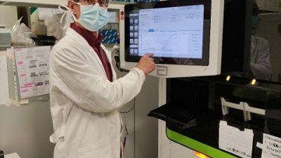Sintomatici sono 41. Altri 25 casi in percorso test antigenico