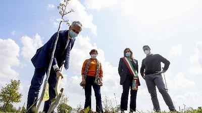 Ad Assago il progetto 'Le città che respirano' per le aree verdi