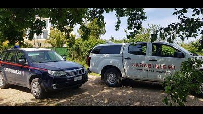 Due arresti e tre denunce, indagine Dda e Carabinieri forestali