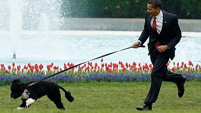 رحيل (بو) كلب عائلة أوباما الوفي