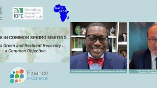 Finance in Common Summit Spring Meeting: public development banks call for new financing for Africa's recovery post-Covid-19
