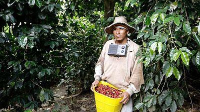 Exportación de 500.000 sacos de café están retrasadas por protestas en Colombia