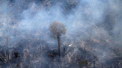 Cámara baja de Brasil aprueba controvertido proyecto de ley para relajar permisos ambientales