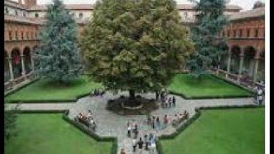 Voto a Milano, Roma, Piacenza, Cremona, Brescia e Campobasso