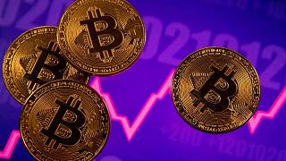 Big Salvadoran majority skeptical of bitcoin as standard currency: poll