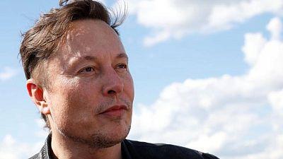 Tesla's Musk blames bureaucracy for German gigafactory delays