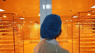 Vietnam scrambles to keep COVID-19 from disrupting industry supply chains
