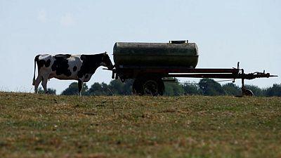 La UE está a punto de finalizar una gran reforma de su política agrícola