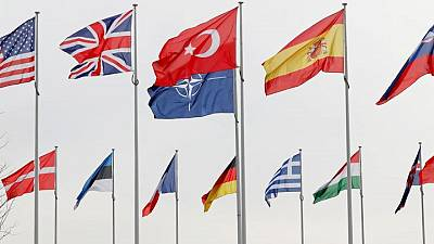 Exclusive: France resists more joint funding of 'brain dead' NATO