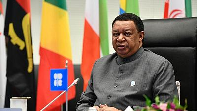 Energy Chamber joins 1st High-level Meeting of the OPEC-Africa Energy Dialogue