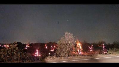 Coldiretti Puglia,400 richieste intervento Vigili fuoco a maggio