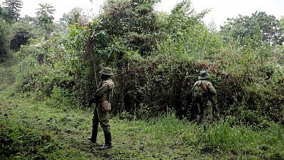 Congo detains alleged ivory trafficker blamed for killings of park rangers -statement