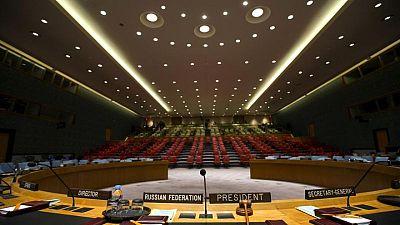 Albania, Brazil, Gabon, Ghana, UAE elected to U.N. Security Council