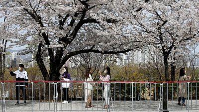 Watchdog says 'pervasive' digital sex crime affecting life for South Korean women, girls