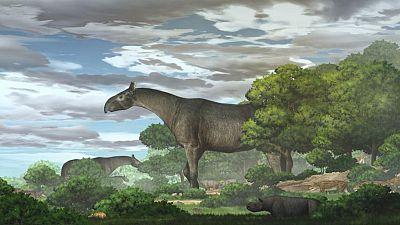 حفريات صينية تكشف فصيلا جديدا من وحيد القرن العملاق المنقرض