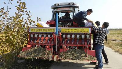 China pide a regiones reforzar suministros de fertilizantes ante marcadas alzas de precios