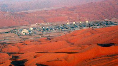 Ministro de Energía saudí rechaza oposición de Emiratos Árabes Unidos al acuerdo de OPEP+