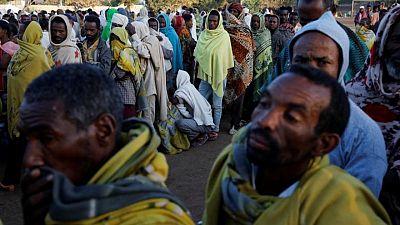 """خبير بالأمم المتحدة: إريتريا لها """"سيطرة فعلية"""" على أجزاء من تيجراي الإثيوبية"""