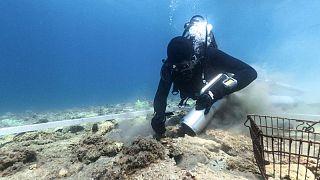 اكتشاف مذهل لمستوطنة تعود إلى ستة آلاف عام قبالة ساحل كرواتيا