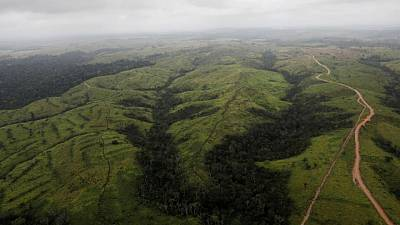 Brazil bans fires, redeploys military to protect Amazon rainforest