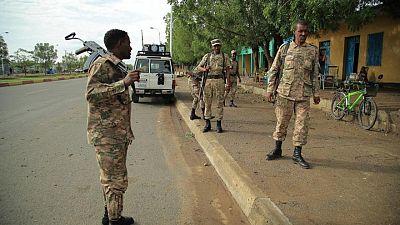 Ethiopia urges Tigray rebels to join ceasefire, hostilities persist