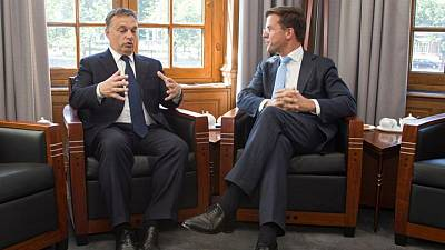 Dutch criticism of Hungary over LGBT rights reeks of 'colonial' past -Orban